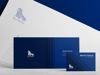 Brand Identity for Blue Walrus company