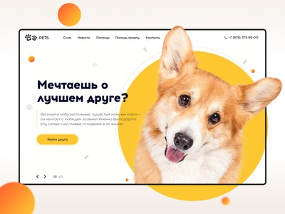 Website design - Pets
