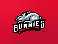 Bunny Mascot Logo