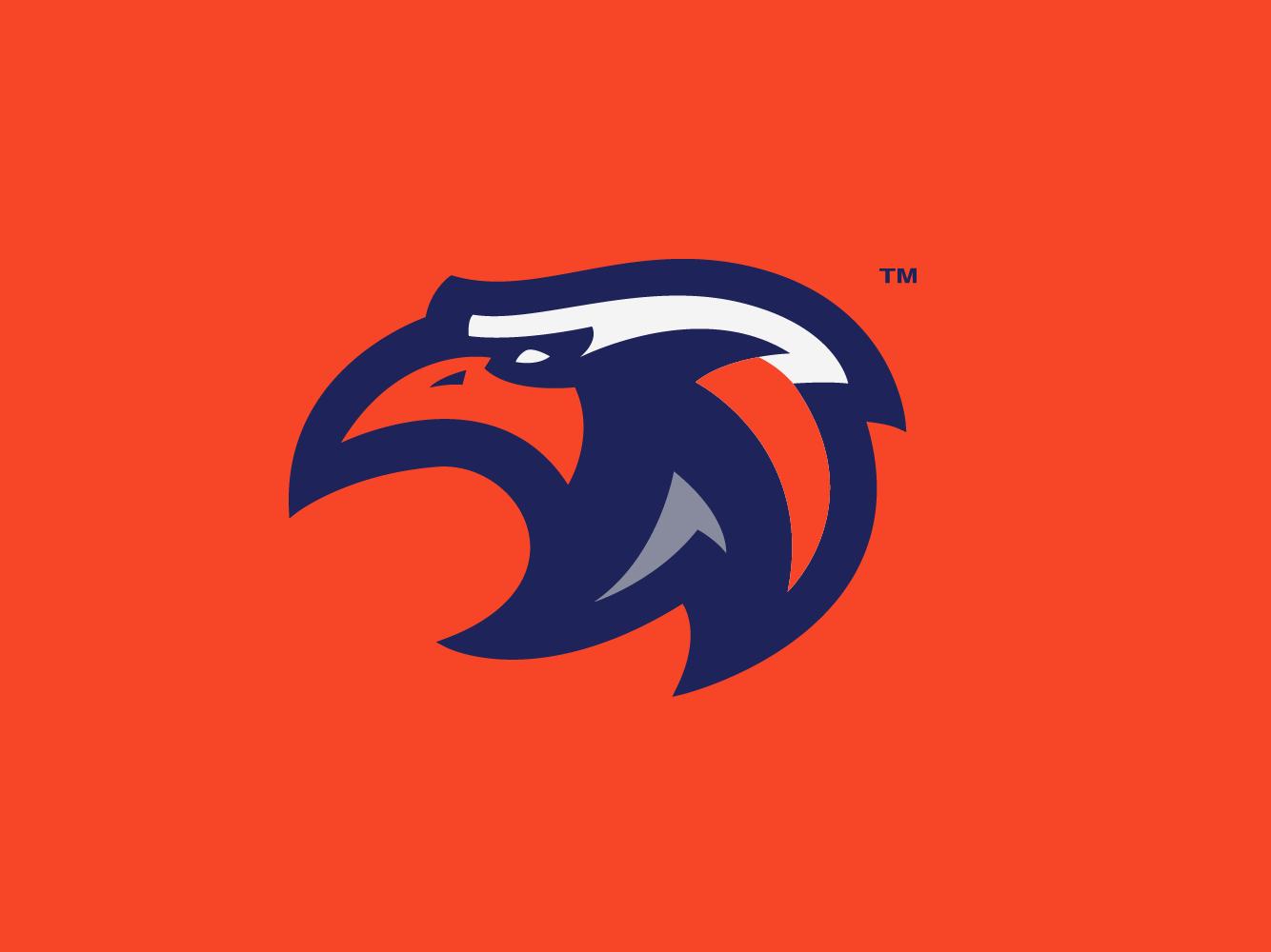 Eagle Logo esport orange illustrator identity brand animal animal logo logo sport logo eagle