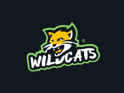 Wildcat logo presentation! mascot logo branding identity photoshop malmoo mascot illustrator esport sport logo