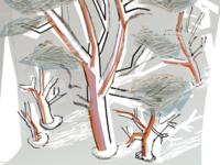 Uber Forest V1