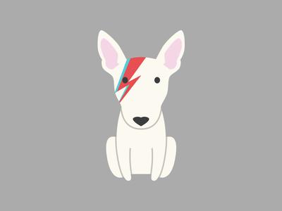 Ziggy Stardog puppy david bowie ziggy startust dog bull terrier