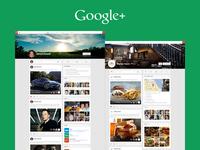 Google+ Profiles (Web)