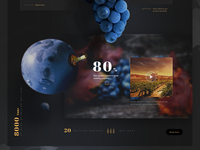 Menada Winery bulgaria white red drinks edesign menada wine design web