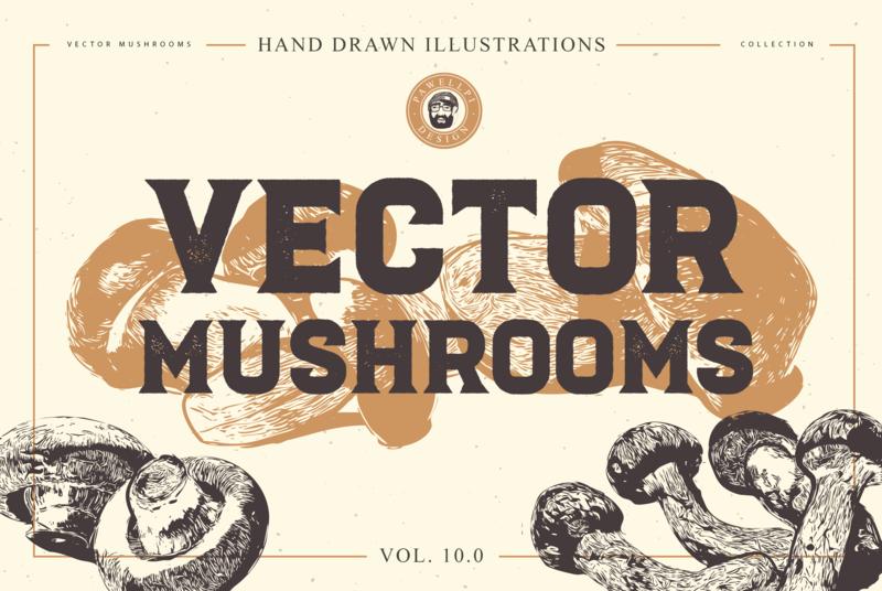 FREE VECTOR MUSHROOMS vintage premium elegant illustration download for free download bundle psd free mushroom