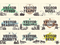 VECTOR ILLUSTRATIONS 350 IN ONE VOL2