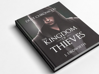 The Kingdom of Thieves nanowrimo fantasy assassin digital art illustration book kingdom of thieves