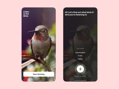 Listen to the Birds App Concept