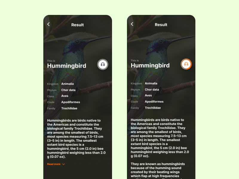 Listen to the Birds App Concept - Result Page voice search study concept birds app design app animal