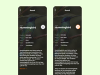 Listen to the Birds App Concept - Result Page