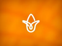 Icon design for OTM