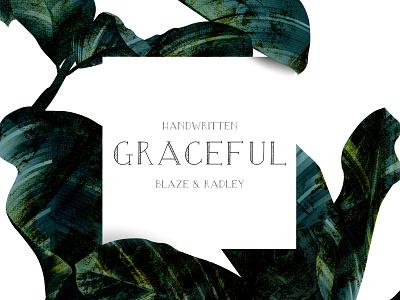 Blaze & Radley Font display font typography graceful grace elegant leaves handwritten typeface font