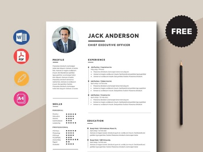 Free Chief Executive Officer Resume Template free cv cv template freebie curriculum vitae free cv template free resume template freebies cv resume