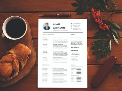 Free Business Controller CV Resume Template free cv cv template freebie resume cv freebies curriculum vitae design free resume template free cv template