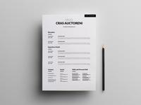 Free Simple Clean CV Template