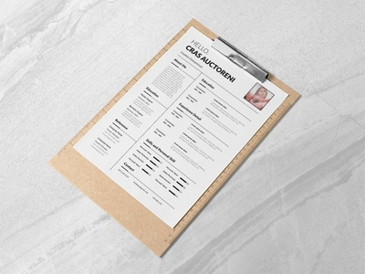 Free Flexible Resume Template