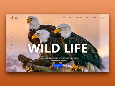 Wild Life template wildlife header page landing page landing website site design web interface interaction ux ui