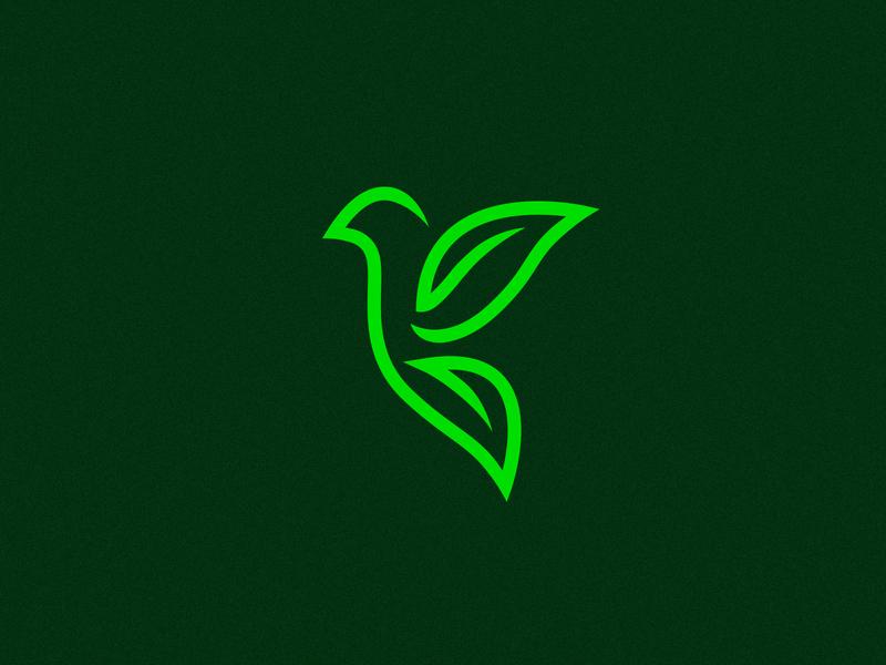 Eco Bird wings pigeon leaves leaf eco bird