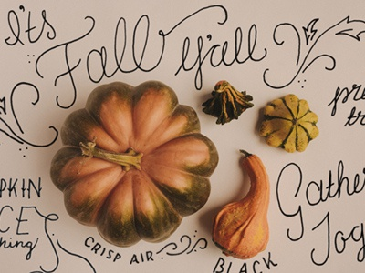 Fall is the best. hand lettering fall pumpkin gather gourds illustration lettering flourish autumn november thanksgiving spice