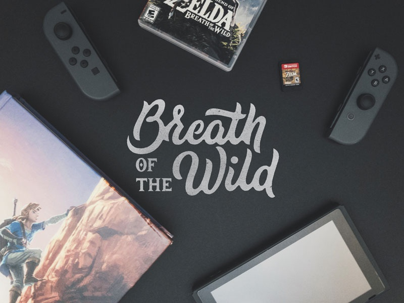 BOTW zelda breath of the wild logotype logo hand lettering lettering