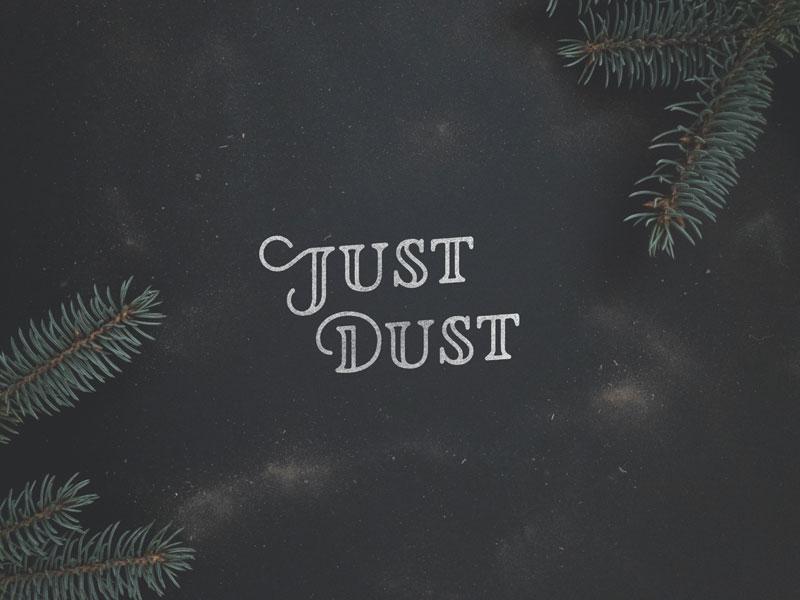 Just Dust hand lettering logotype logo lettering