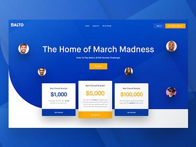 Balto Hero Concept data cashflow money blue interface ux ui design website landing page balto