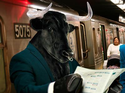 Bull and Bear forex chart stock trading wallstreet trade subway options new-york binary