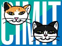 The Cimit