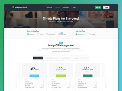 Mongo Director Redesign interface ui clean saas webapp website