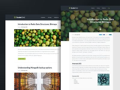 Blog Page Design desktop screen page clean interface ui web blog