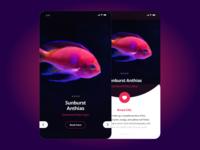 Part 2 of Aquarium theme app