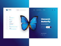 Butterfly eCommerce Landing Page