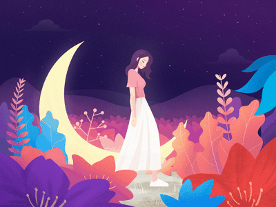 Moon Bay starry sky plant night imagine illustration moon