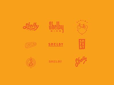 Shelby Study drawn typography lettering wordmark script logomark logo