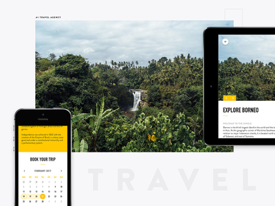 Travel Agency UI tablet mobile calender travel ui