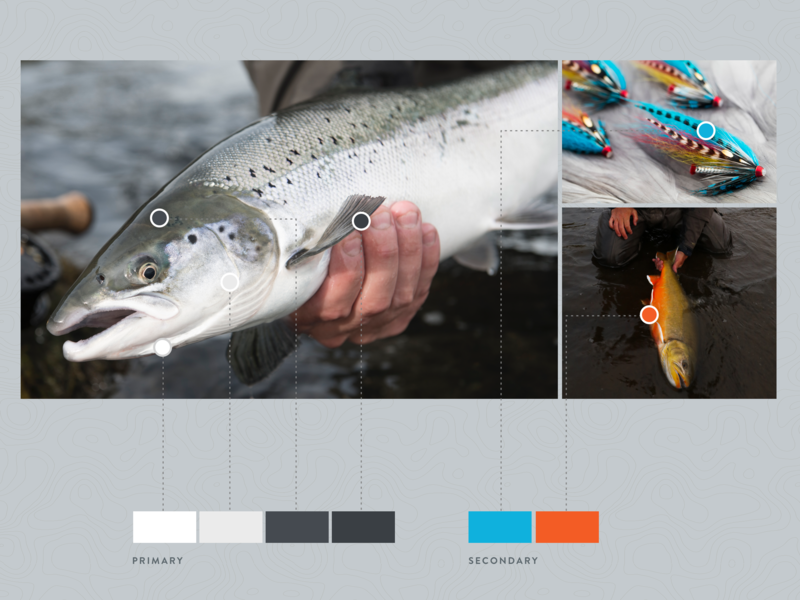 Colored by nature uidesign nature color palette color