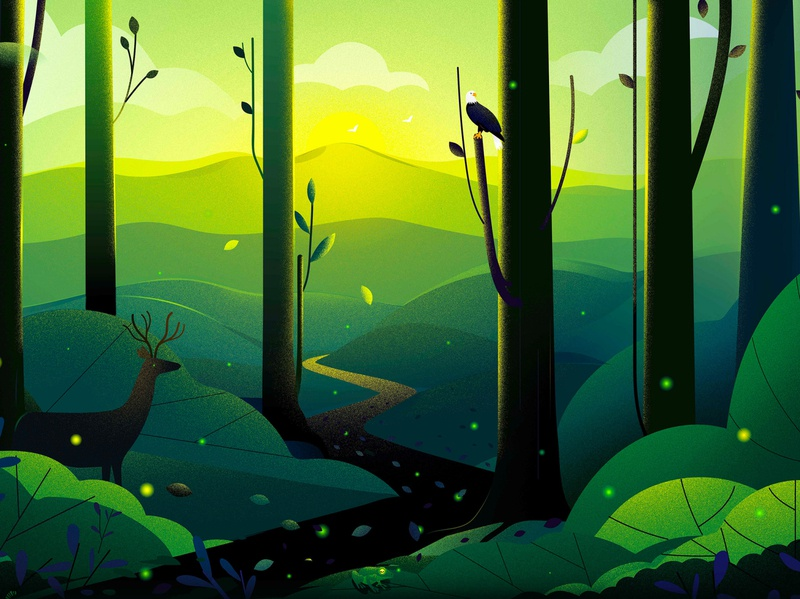 Forest in - Massachusetts cannabis sun firefly tree road nature trip journey travel mountain eagle deer forest landscape illustration