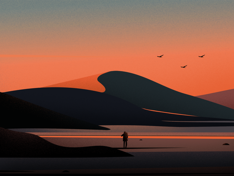 journey fireart studio evening sun bird vector light illustrations art hill nature landscape sunset journey illustration