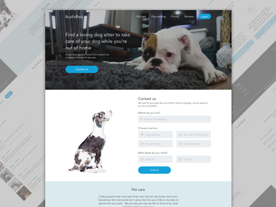 Contact Us daily ui landing page contact form contact us ui website landing vet dog blue contact