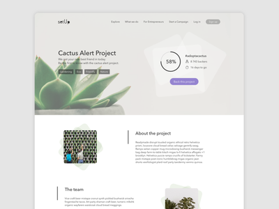 Crowdfunding campaign categories design website landing page uiux dailyui032 daily ui daily 100 cactus crowdfund crowdfunding ui