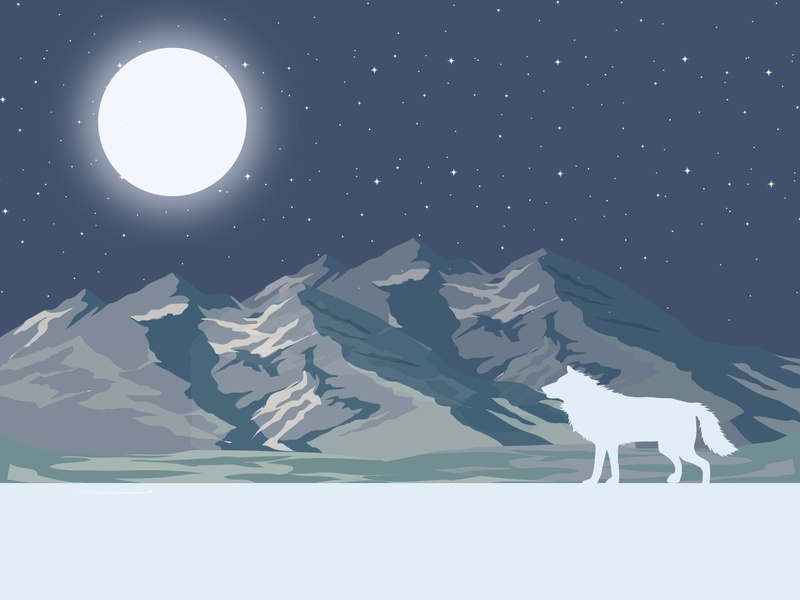 Walk on the Wild Side idea create concept vector draw wild illustator design colour dribbble