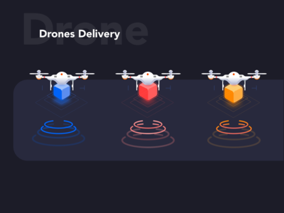Did you like these Drones?