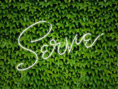 Serve / Faux Neon leaves faux neon branding identity logo lettering typography serve