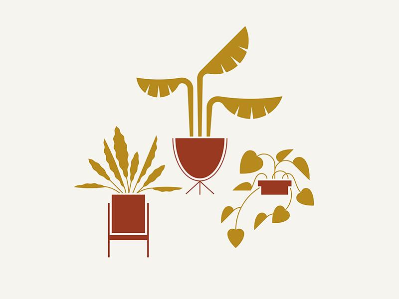 Rush Creek / Plant Vibes mid-century midcentury mid century modern mid century pot planter plant leaf leaves