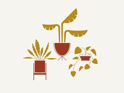 Rush Creek / Plant Vibes