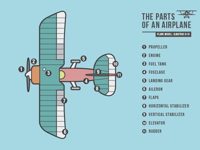 The parts of an airplane (Albatros D-XI)