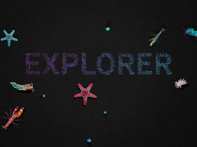 St Legers Yard Dribble Explorer