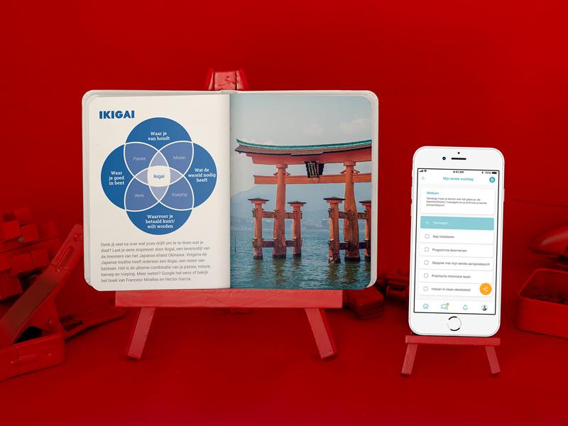 Product Photography Belmondo campaign launch ux design print design photography e-commerce typography digital graphic design campaign print identity product photography art direction branding
