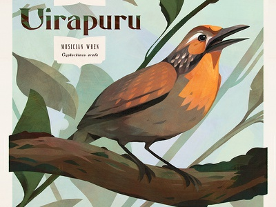 Birds — Uirapuru painting drawing brazil poster birds vintage illustration bird